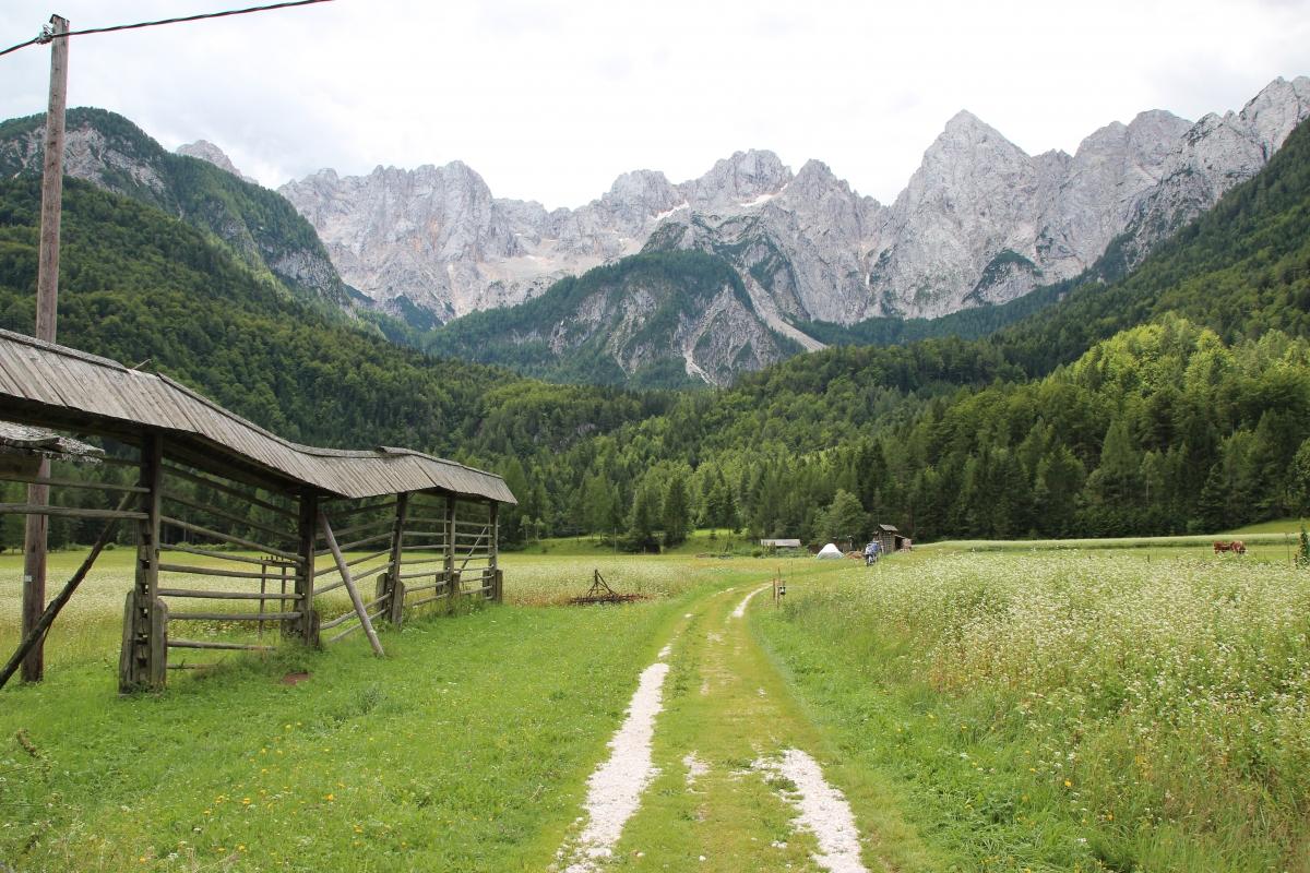 Špik – kemping w otoczeniu majestatycznych szczytów Alp Julijskich