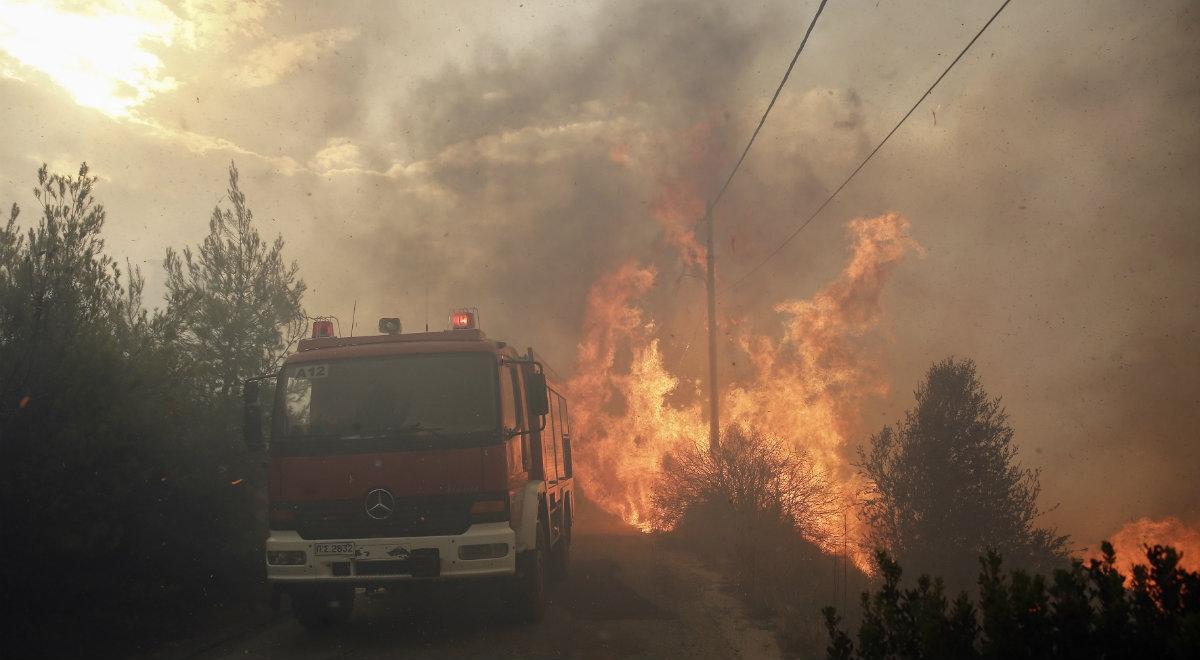Potężne pożary w Grecji, nie żyje dwoje Polaków [FILM]