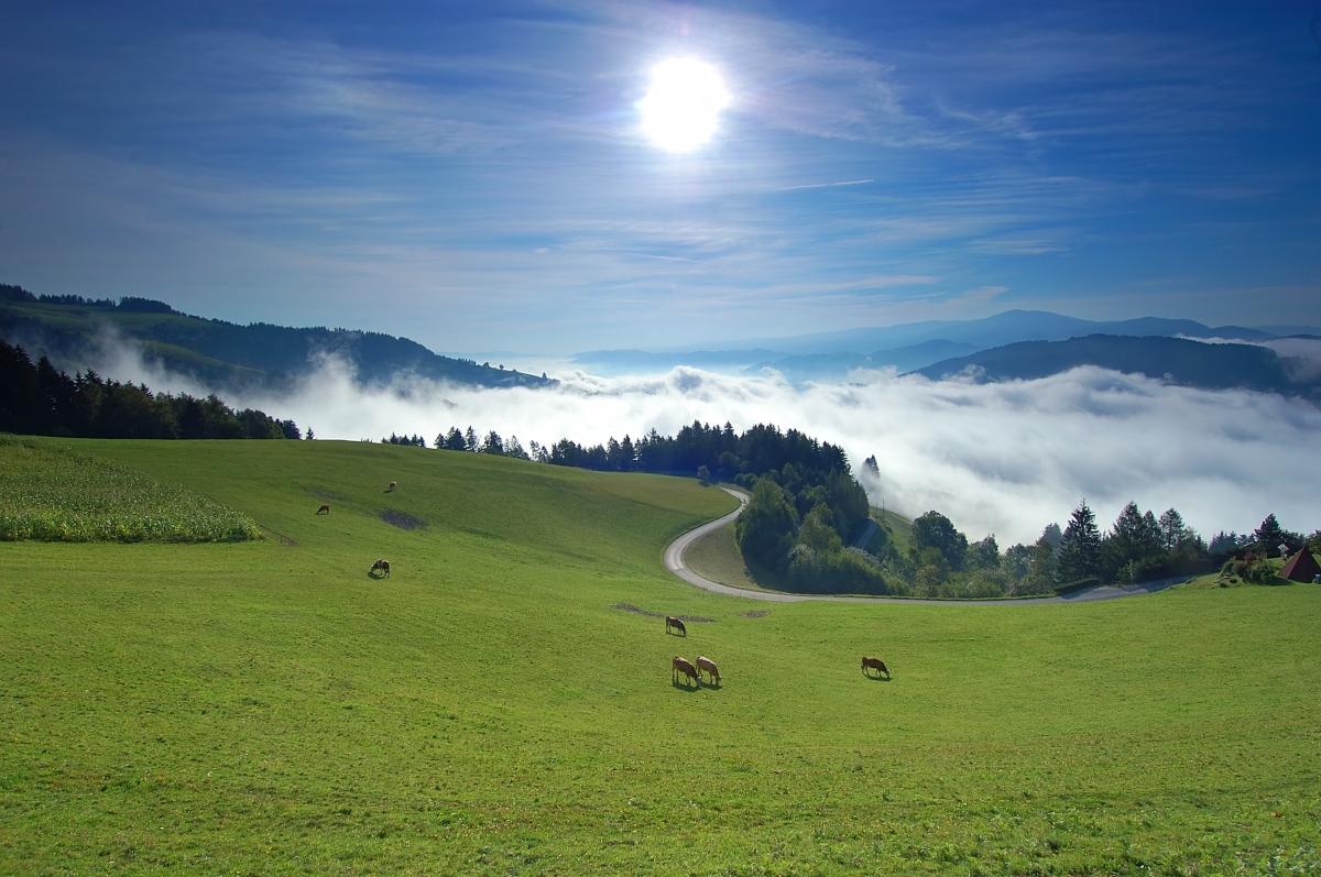 Pomysł na weekend? Słowenia!