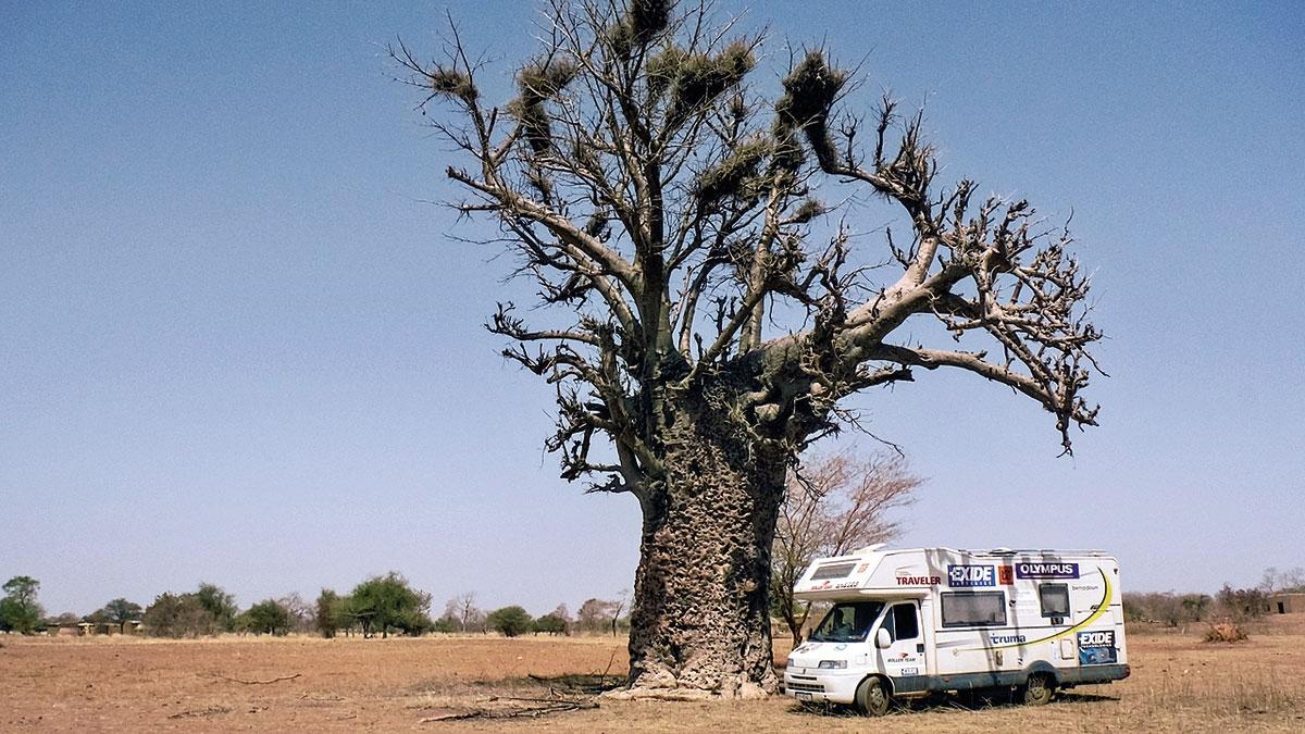 Burkina Faso, Wayen, baobab ikamper