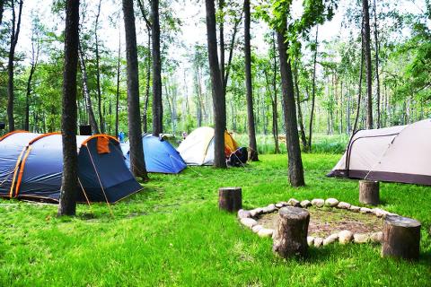 Camping nr 77 Perła Krutyni