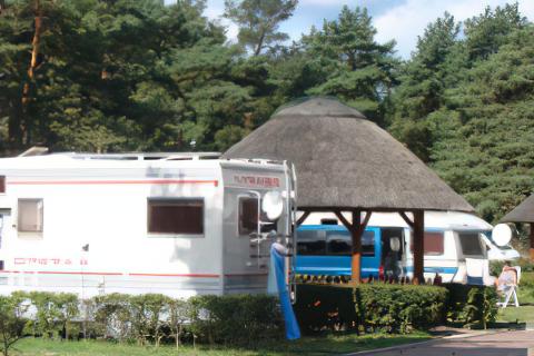 Camping Biały Dom