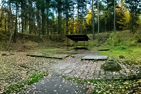 Miejscówka 035 - Boryszyn