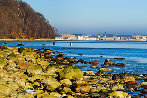 Miejscówka 293 - Gdynia IV
