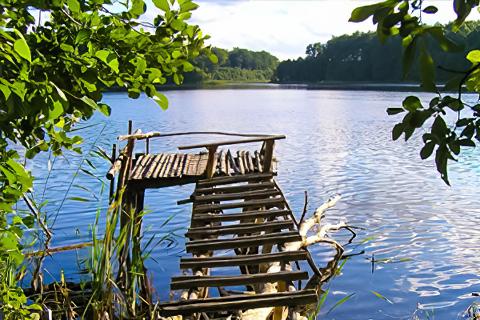 Miejscówka 296 - jezioro Krzemno