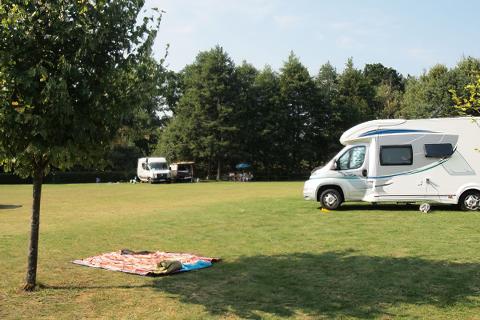Pole namiotowo-campingowe w Bobięcinie