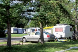 Camping nr 243