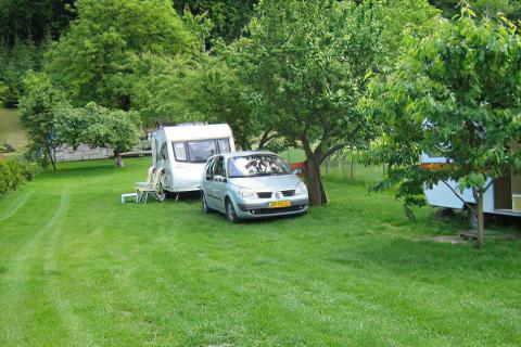 Camping Pielaka nr 39 w Kazimierzu Dolnym
