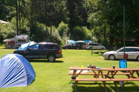 Kemping - Pole namiotowe