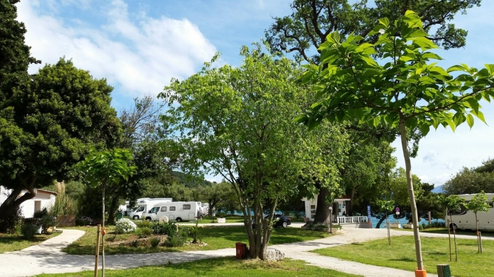 Camping Viter