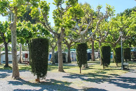 Campeggio Green Village