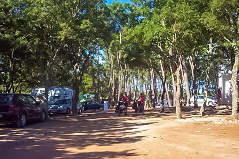 Camping Bosco Selva
