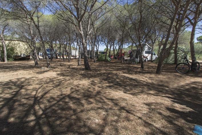 Camping Pedra - Cupa