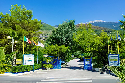 International Camping Village