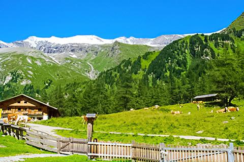 Nationalpark Camping Kals am Großglockner