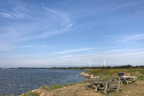 Miasta Aalborg miejscówka nad samą wodą - Raerup