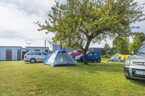 Pole namiotowe Władysławowo - Owocowy Sad