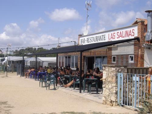 Salinas podłączyć