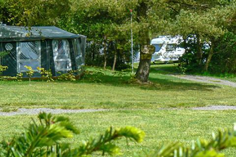 Tolne Bakker Camping