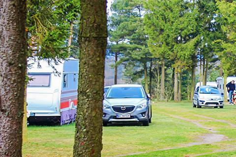 Trust Camping