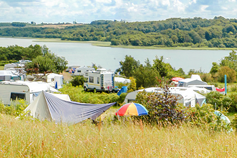 Vammen Camping
