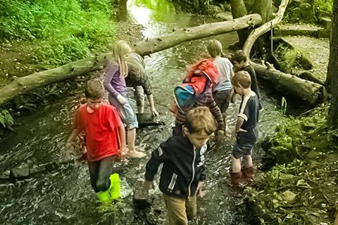 Natur-Camping Hammerbrücke